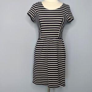LOFT Navy White Slimming Aline Dress
